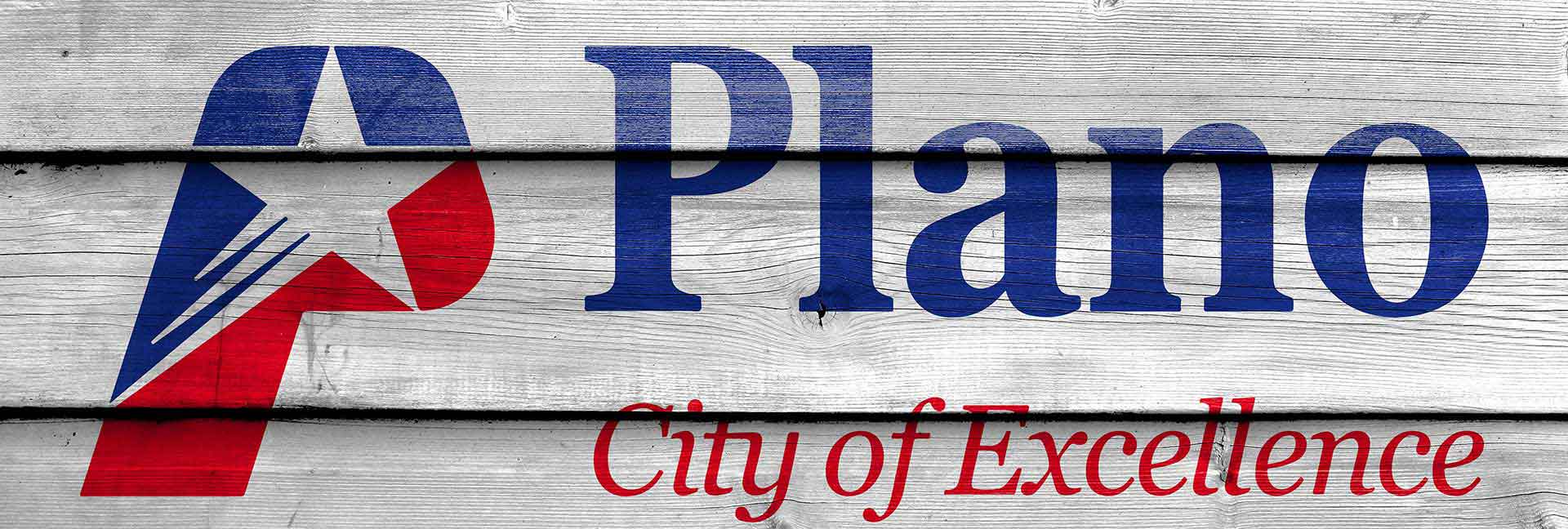Plano website design banner