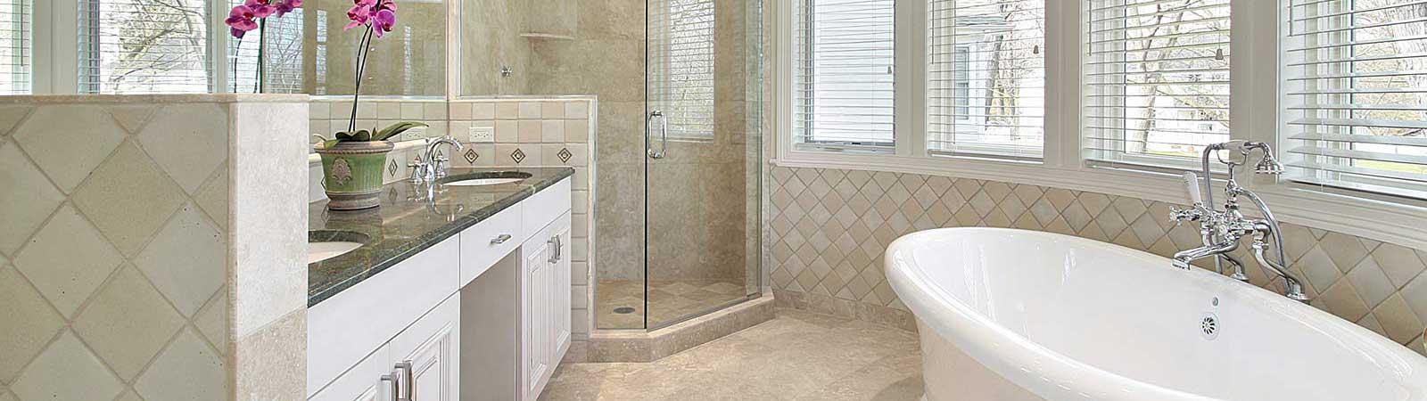 frameless shower project bg
