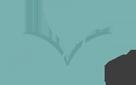 Frisco Spa Client Logo